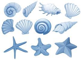 Un set di Blue Seashell vettore