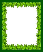 Un bordo fatto di foglie