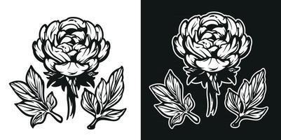 illustrazione in bianco e nero del fiore di peonia. vettore