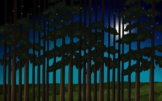 Foresta di scena notturna vettore