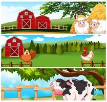 Animali da fattoria nella fattoria