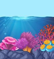 Scena di corallo oceano subacqueo vettore