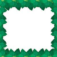 Cornice verde leafe nature vettore