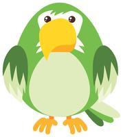 Pappagallo verde su sfondo bianco