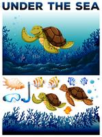 Tema dell'oceano con vite sott'acqua vettore