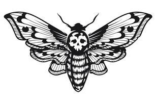 Morte Testa Falco Falena