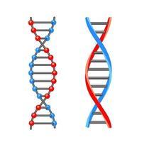 molecola di dna. icona. Illustrazione vettoriale su sfondo bianco.