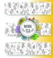 Raccolta di banner di tè alle erbe. Erbe biologiche e fiori selvatici. Illustrazione delle bacche di frutti schizzata mano. vettore