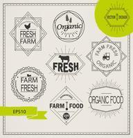 agricoltura e icone di fattoria biologica vettore