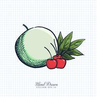 Illustrazione disegnata a mano di frutta e verdura vettore