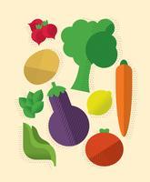 Set di verdure colorate