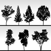 Silhouette dell'albero. vettore