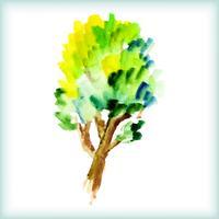albero verde acquerello