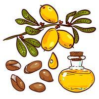 Set di olio di argan vettore