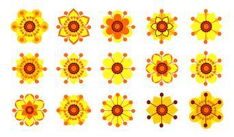 Set di fiori gialli vintage. vettore