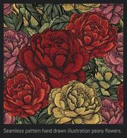 fiori di peonia illustrazione disegnata a mano senza cuciture. vettore