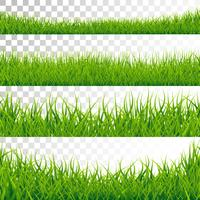 I bordi dell'erba verde hanno messo l'illustrazione di vettore su fondo trasparente.