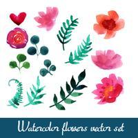 Set di bellissimi fiori ad acquerelli