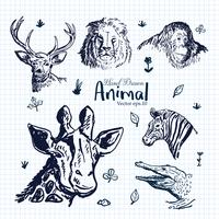 Insieme disegnato a mano dell'illustrazione animale vettore