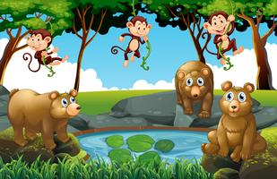 Scena della foresta con orsi e scimmie