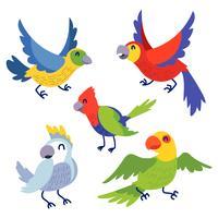 Set di clipart per uccelli vettore