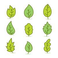 Vettore della raccolta delle foglie verdi