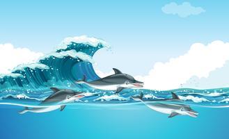 Delfini che nuotano sotto l'oceano vettore