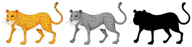 Set di caratteri ghepardo vettore