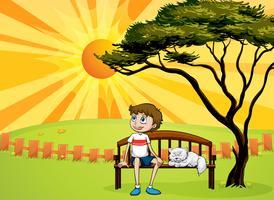 Un ragazzo e un gatto seduto su una panchina