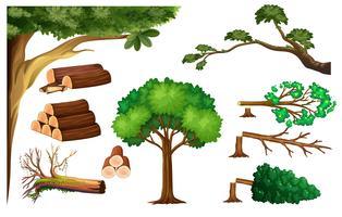 Un set di alberi da taglio vettore