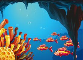 Una scuola di pesci che va verso le barriere coralline all'interno della grotta vettore