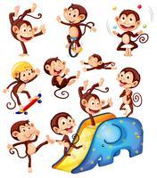 Un set di caratteri scimmia vettore