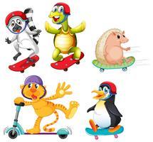 Set di animali con sport estremo vettore