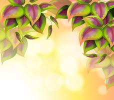 Una carta speciale con foglie a forma di cuore