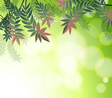 Una cartoleria con molte foglie