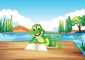 Una rana che legge un libro al trampolino di legno