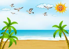 Spiaggia vettore