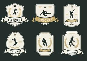 Pacchetto di vettore di etichetta giocatore di cricket