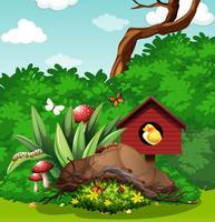 Uccello e insetti in giardino vettore
