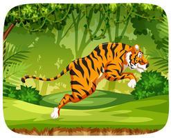 Una tigre che salta nella foresta