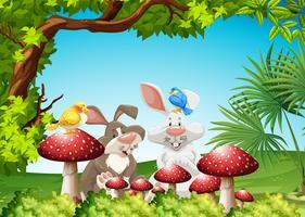 Conigli e uccelli nel giardino
