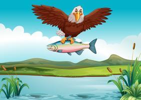Aquila che pesca pesce nel lago vettore