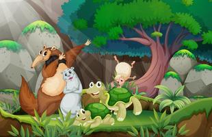 Animali e giungla vettore