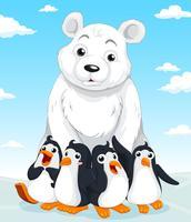 Orso polare e pinguini vettore