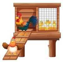 Pollo e pulcini in gabbia