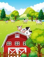 Scena di fattoria con mucche e fienile