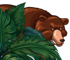 Orso grizzly selvaggio dietro il cespuglio