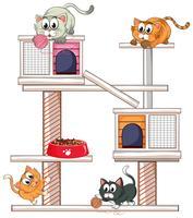 Gatti che giocano sul condominio per gatti