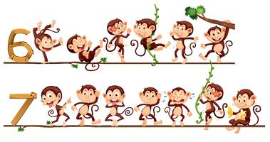 Scimmie e numero sei e sette vettore