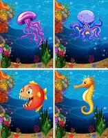 Animali marini che nuotano sotto il mare vettore